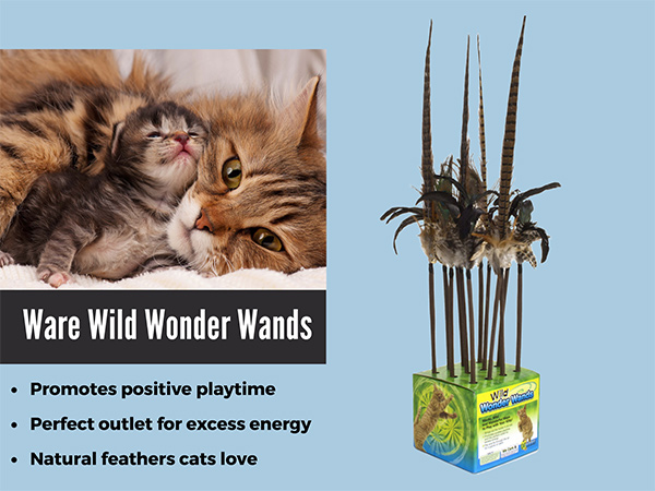 Ware Wild Wonder Wands