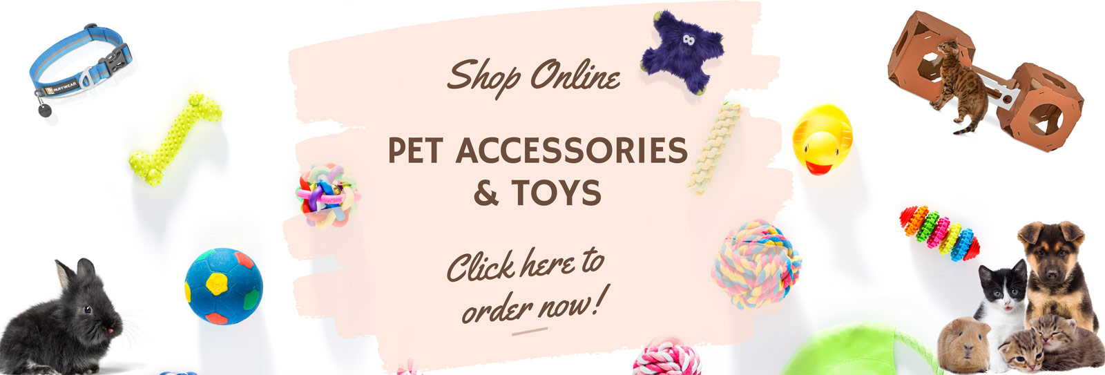 Pet Accessories & Toys