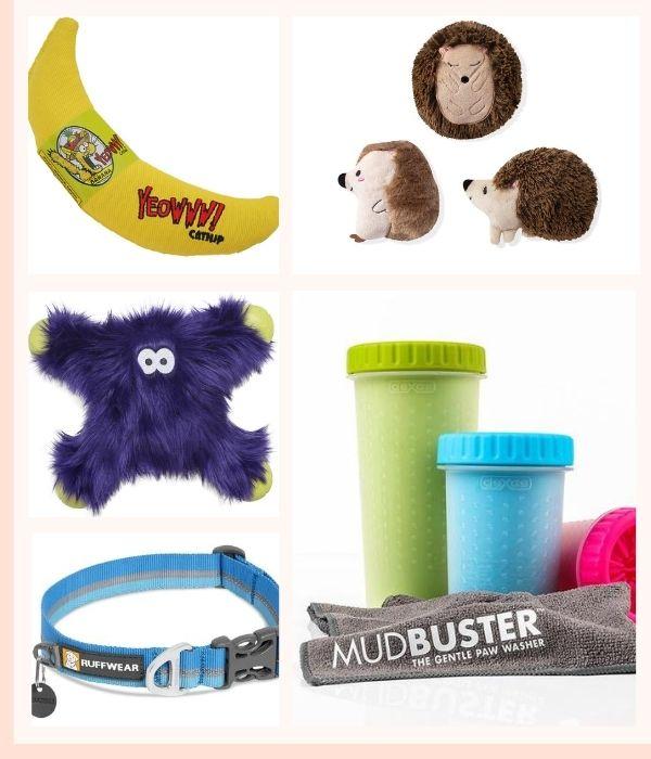 Pet Accessories & Toys